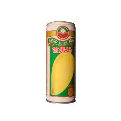 Jus de fruits - mangue (33cl)